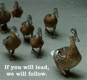 Leader.follow2